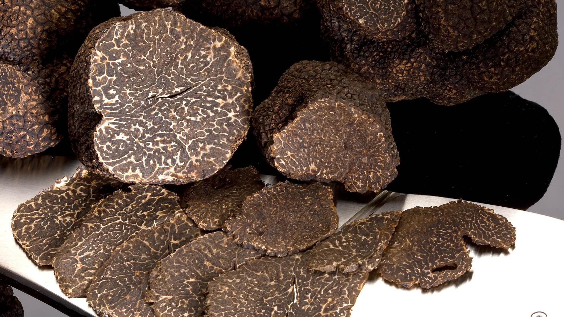 La truffe - Comment cuisiner les truffes noires ...